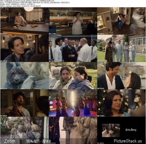 Cudowne Życie Po Życiu / It`s a Wonderful Afterlife [2011] [DVDRip XviD] [Lektor PL]